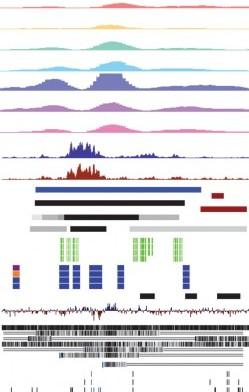 Visualization for data exploration
