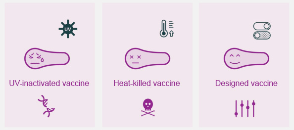 Traditional and novel forms of vaccines.