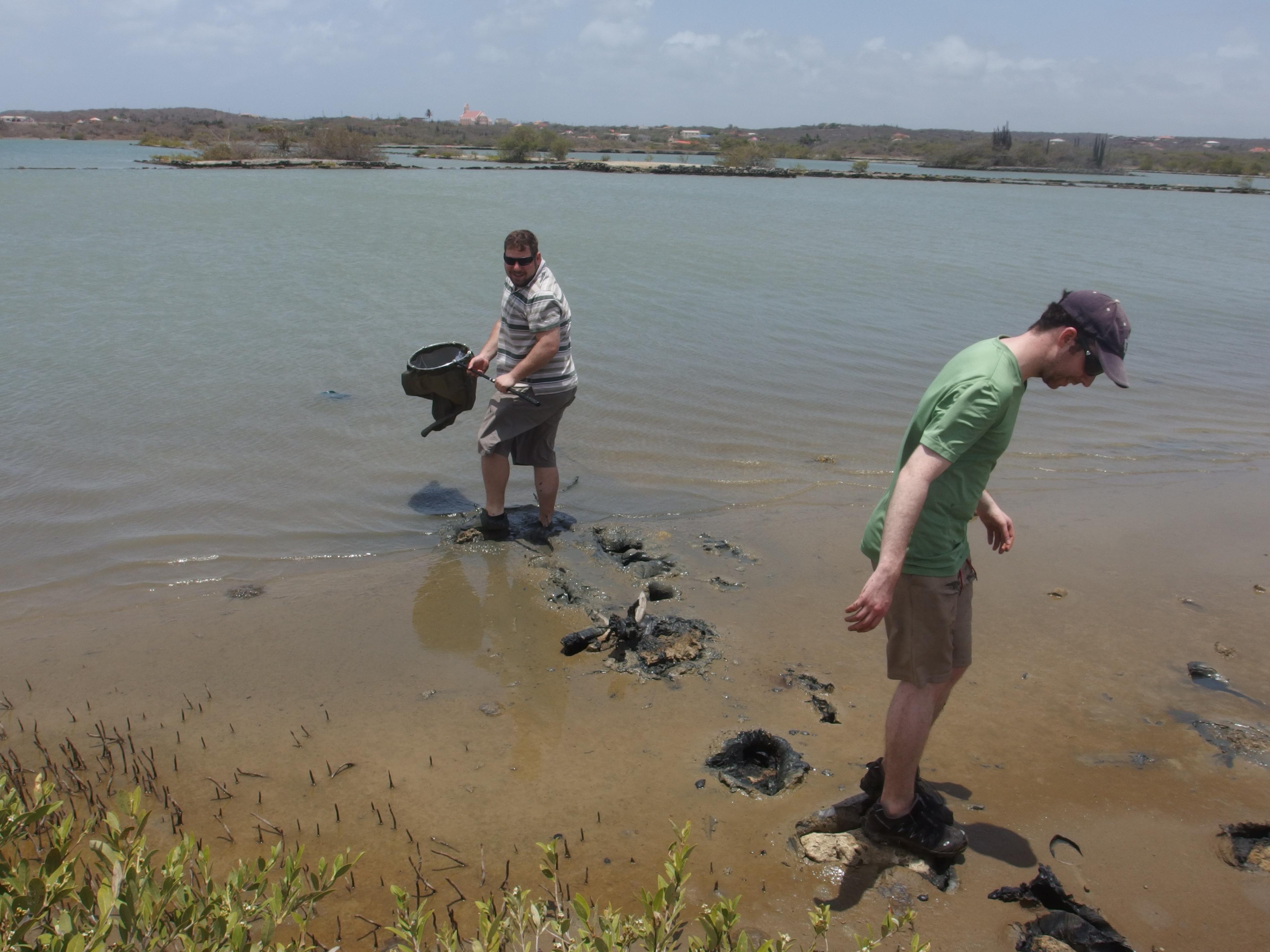 Martin Kolisko and Gordon Lax collecting samples in Curaçao