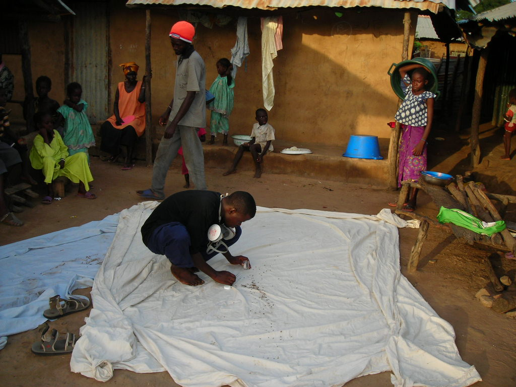 Collecting mosquitoes via pyrethrum spray catch in The Gambia