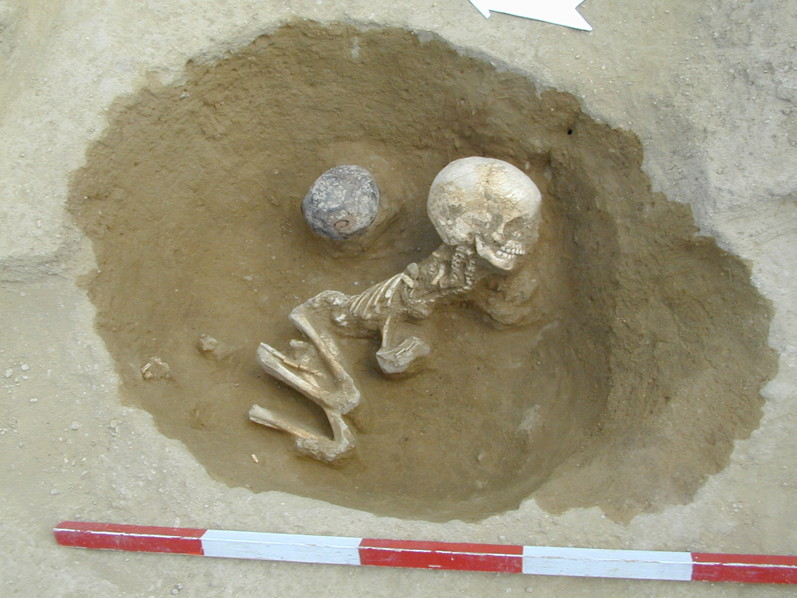 An Early Neolithic grave from Balatonszárszó (Hungary) that was also part of the mtDNA analyses.