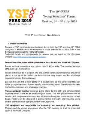 YSF Presentation Guidelines