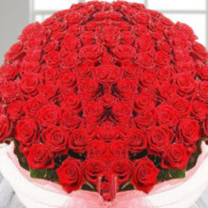 Go to the profile of florists chennai