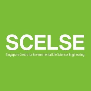 Go to the profile of SCELSE