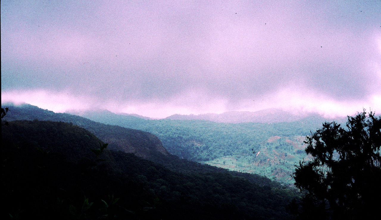 Humboldt's climate change vision in the African mountains