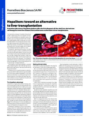 HepaStem: toward an alternative to liver transplantation