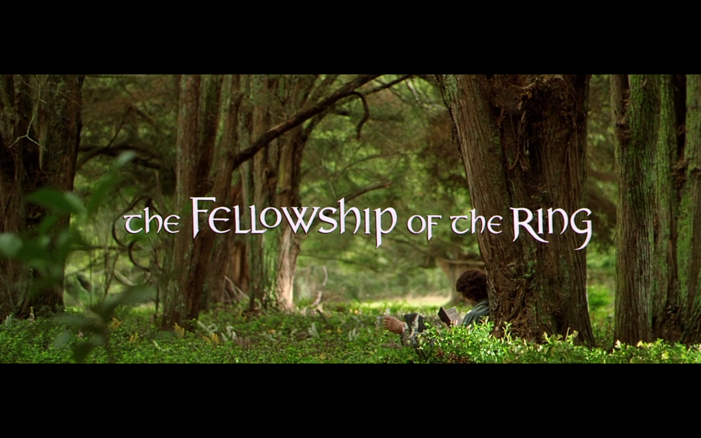 Is The Fellowship Of The Ring Hard To Read