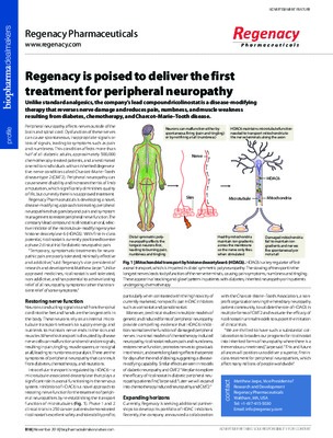 Regenacy is poised to deliver the first treatment for peripheral neuropathy