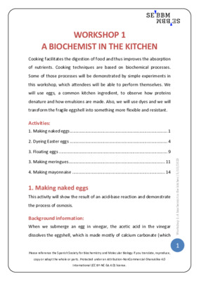 A biochemist in the kitchen – SEBBM workshop 1