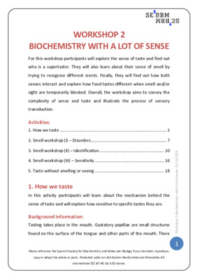 Biochemistry with a lot of sense – SEBBM workshop 2