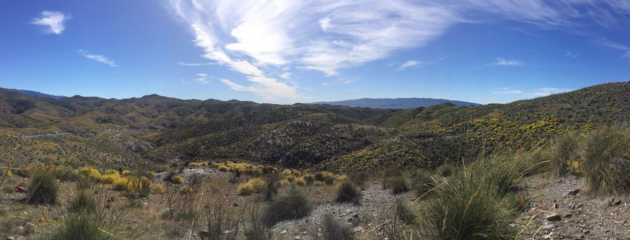 Desert Ecosystems  - cover