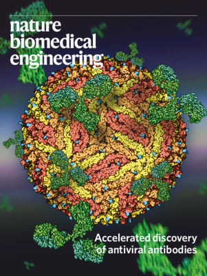 Accelerated discovery of antiviral antibodies