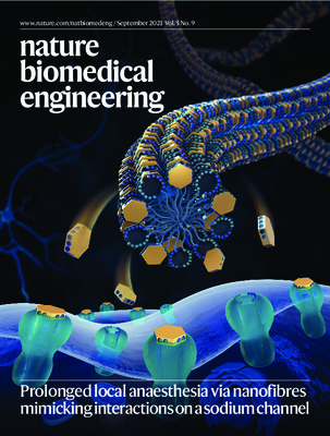 Prolonged local anaesthesia via nanofibres mimicking interactions on a sodium channel