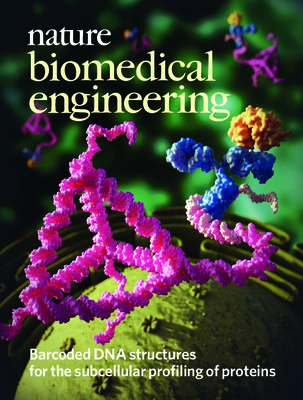 Barcoded DNA structures for the subcellular profiling of proteins