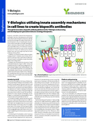 Y-Biologics: utilizing innate assembly mechanisms in cell lines to create bispecific antibodies