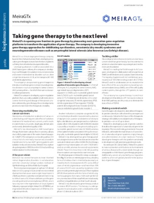 Taking gene therapy to the next level