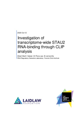 Investigation of transcriptome-wide STAU2 RNA-binding through CLIP analysis