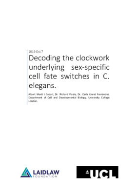 Decoding the clockwork underlying sex-specific cell fate switched in C. elegans
