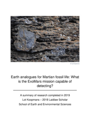 Earth Analogues for Martian Fossil Life: What is the ExoMars Mission Capable of Detecting?
