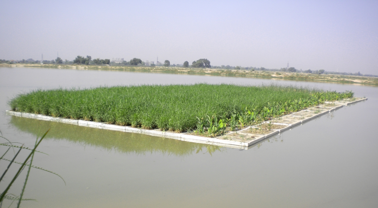 Floating wetlands for low-cost wastewater treatment