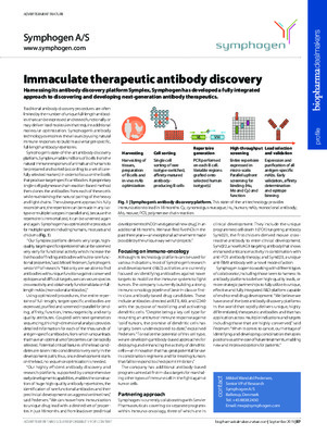 Immaculate therapeutic antibody discovery