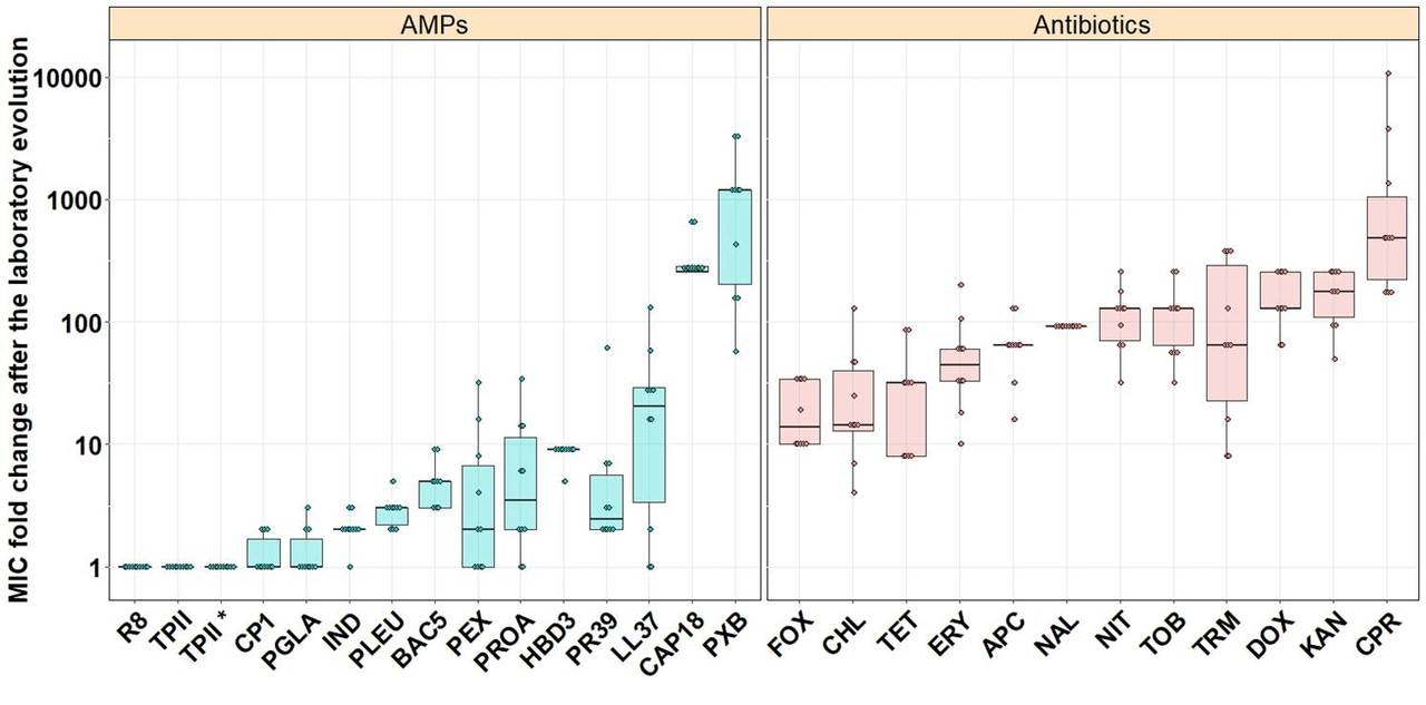 Antimicrobial peptides with limited resistance