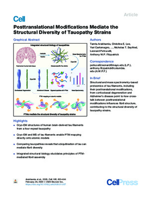 Posttranslational Modifications Mediate the Structural Diversity of Tauopathy Strains