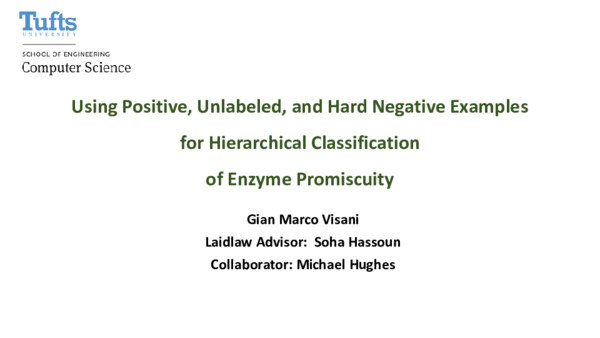 Using Positive, Unlabeled, and Hard Negative Examples for Hierarchical Classification of Enzyme Promiscuity