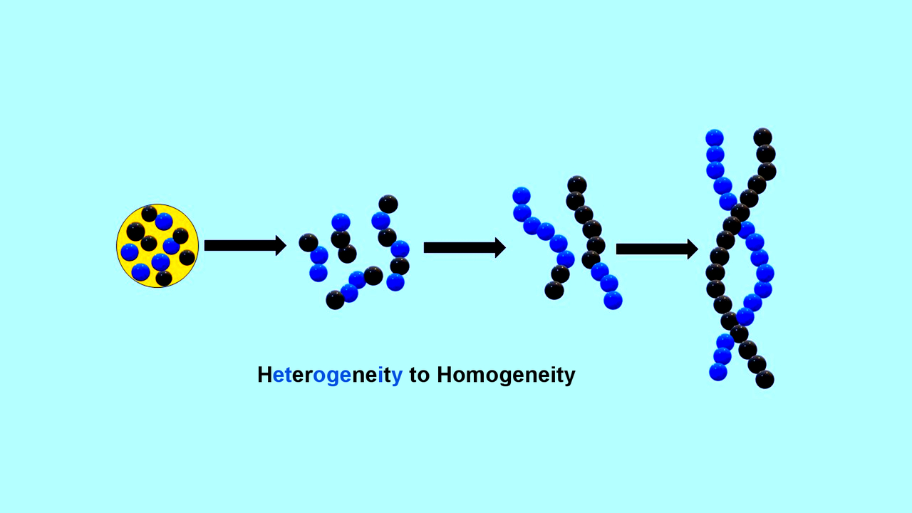 New insights into the emergence of life's genetic polymers ...