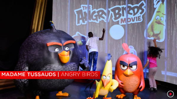 2018  Angry Birds