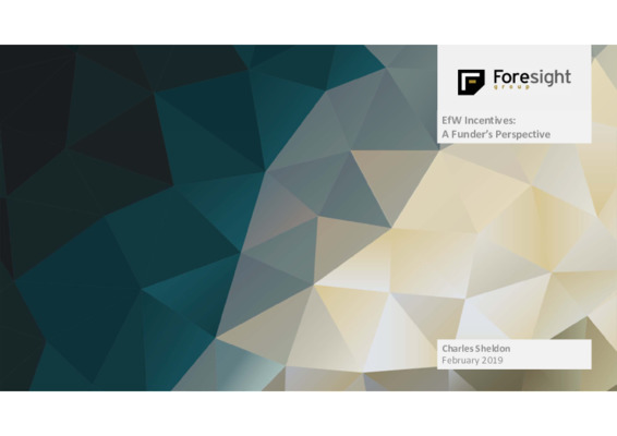 EfW 2019 Incentive insight 1: Foresight Group