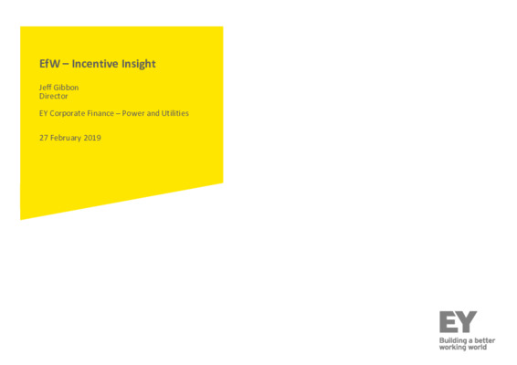 EfW 2019 Incentive insight 2: EY Corporate Finance