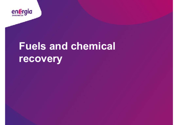 EfW 2019: Fuels and chemical recovery – the future? 1