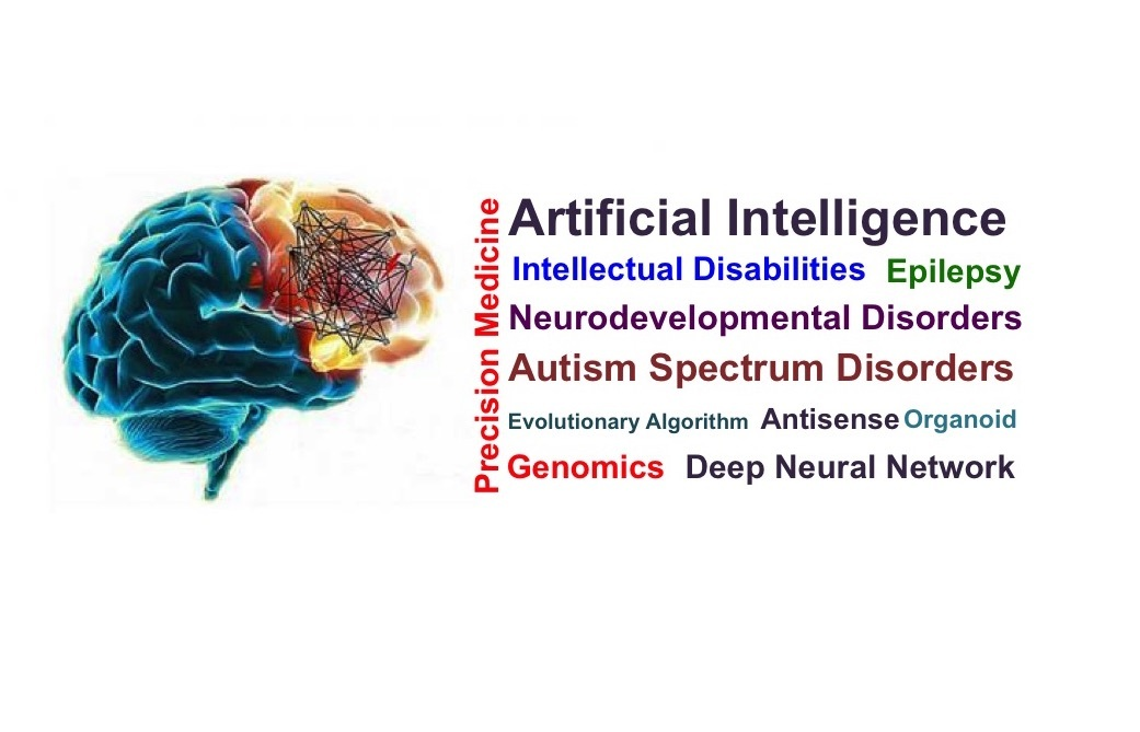 Application of Artificial Intelligence in Neurodevelopmental Disorders, Opportunities and Challenges