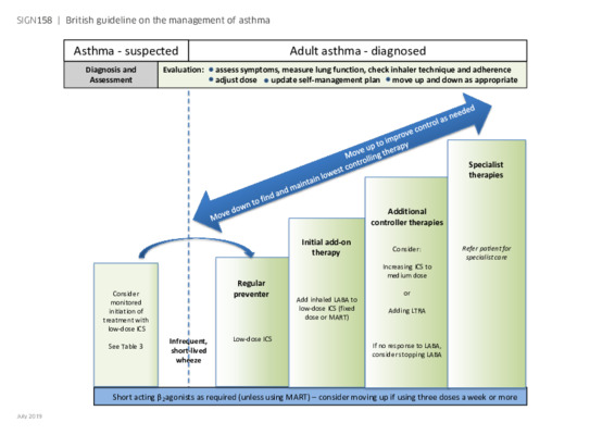 Stepwise management of asthma in adults