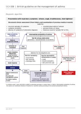 Asthma diagnostic algorithm - SIGN guidance