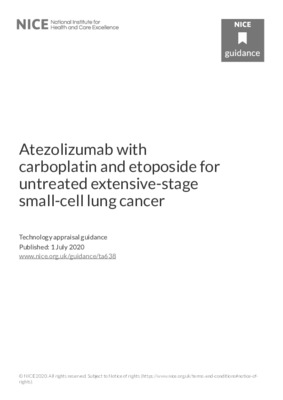 Atezolizumab with carboplatin and etoposide recommended for lung cancer