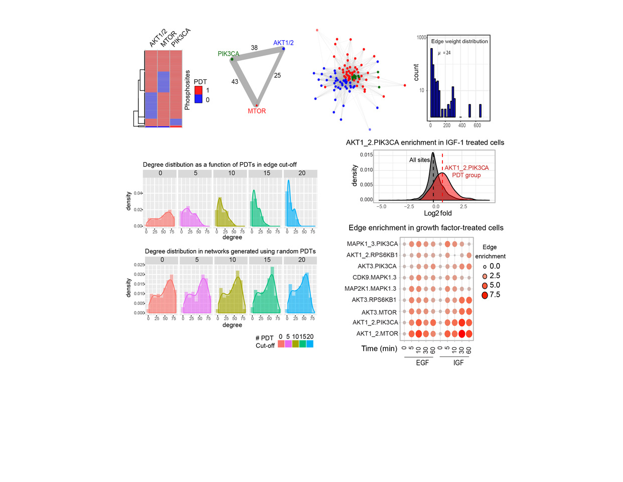 Phosphoprotein signatures and computational approaches reconstruct patient-specific kinase network topologies