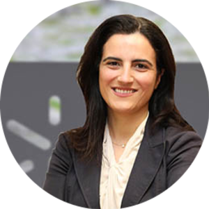 Go to the profile of Sandra Cristina Almeida Paiva