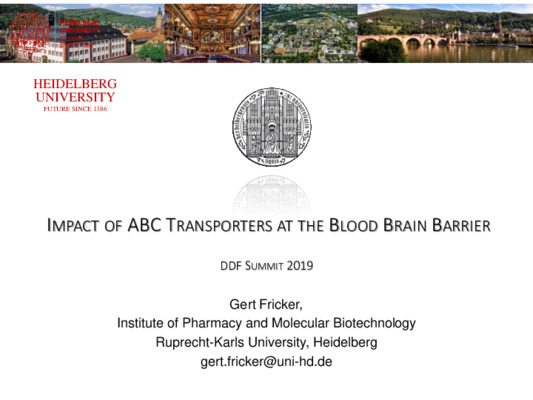 Impact of ABC Transporters at the Blood Brain Barrier