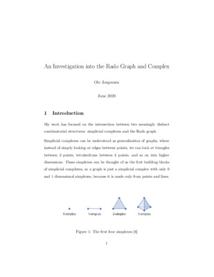 An Investigation into the Rado Graph and Complex - Essay