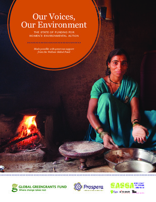 The state of funding for women's environmental action