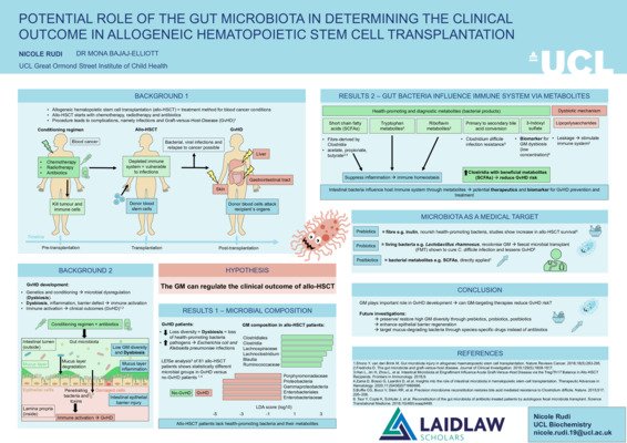 Potential role of the gut microbiota in determining the clinical outcome in allogeneic hematopoietic stem cell transplantation