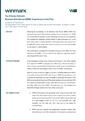 Business Risk Review: Experiences of the Pilot
