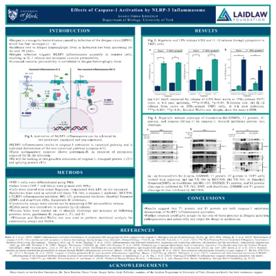 Louisa Kamajaya 20 - Effects of Caspase-1 Activation by NLRP-3 Inflammasome