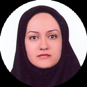 Go to the profile of Naeime Heiranizadeh