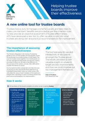 Trustee Effectiveness Assessment
