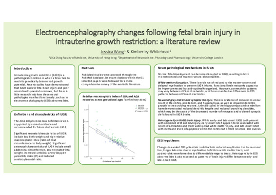 [Poster] Electroencephalography changes following fetal brain injury in intrauterine growth restriction: a literature review