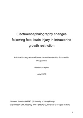 [Research report] Electroencephalography changes following fetal brain injury in intrauterine growth restriction