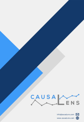 CausaLens - Causal AI Brochure and Case Study